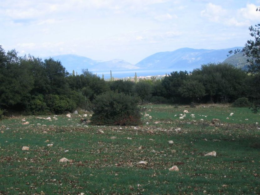 Large plot near Haliotata